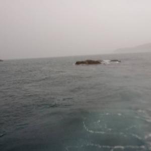 5月15日  とりあえず大雨予報でも釣りへ…
