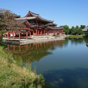 社員旅行 京都 神戸 姫路 ( 2 )