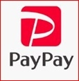 Pay Pay その後 & テレビ騒動
