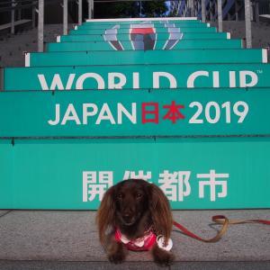 本日ワールドカップラグビー スコットランド戦、横浜開催できるかな ふぁいとん