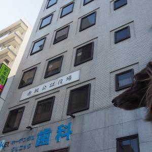 赤坂~青山へ とらや本店 新国立競技場に行こう -4