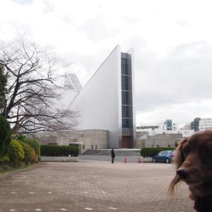 丹下健三の設計 東京カテドラル聖マリア大聖堂 雑司が谷から2020お散歩スタート-7