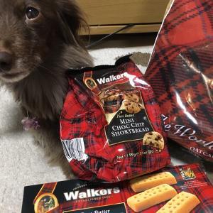 今日は何の日「ビスケットの日」福袋で買ったウォーカーズ、美味しいんです(^^♪