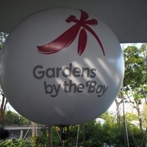 ガーデンズ・バイ・ザ・ベイ & チームラボ 弾丸deシンガポール-16
