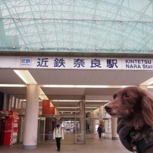 大和路おもいで発信ポスト 奈良-2 倉敷・奈良・大阪にお出かけ2020