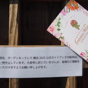 花壇展やっていました ガーデンネックレス横浜2020/4/11-11