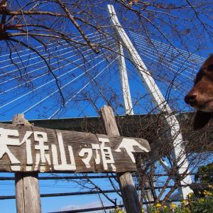 日本一低い山「天保山」 大阪-28 倉敷・奈良・大阪にお出かけ2020