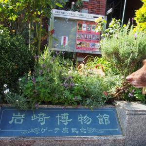 岩崎博物館 『人間ドックの日』ガーデンネックレス横浜2020/5/17-15