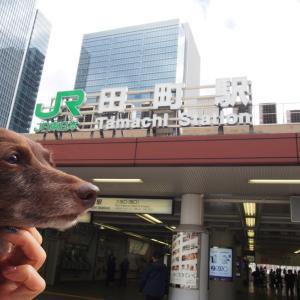 田町のカナル散策 秋薔薇を訪ねて東京散歩 高輪編-11