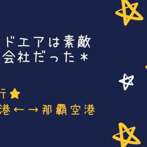 SFC修行 神戸空港↔︎那覇空港〜ソラシドエアは素敵な航空会社だった〜