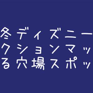 """冬ディズニー*プロジェクションマッピング""""Celebrate! Tokyo Disneyland""""を観る穴場スポット"""