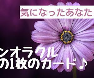 【今の1枚のカード♪】ワンオラクルカード占いを再開してみた!!(毎日動画UP予定!)