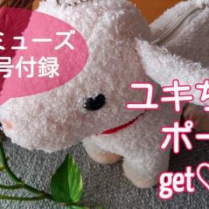 【雑誌付録】オトナミューズ8月増刊号(セブンイレブンバージョン)ユキちゃんポーチ♪とセブンの梅茎わかめ♪