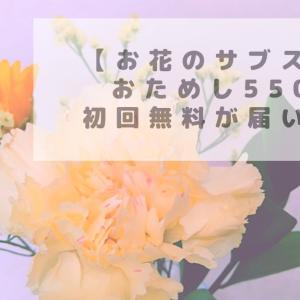 【サブスク】①お花の定期便♪ブルーミー500円の体験コースを初回無料で頼んだのが届きました!㊶(#まったり動画ブログ)