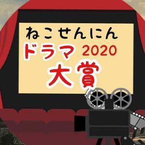 「輝け!ねこせんにんドラマ大賞2020」発表!今年観た面白い配信作品は?