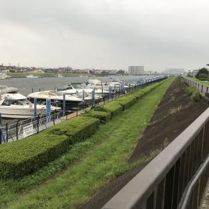 Netflix「全裸監督」世界に通用するドラマだ!日本のTVはオワコンか?そしてロケ地が俺の朝の散歩コースだ!