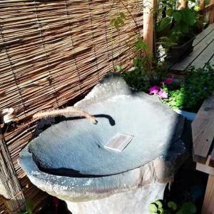 真夏の木と土の家 … 表面温度を実測 ~ 断熱性能と輻射熱は?!