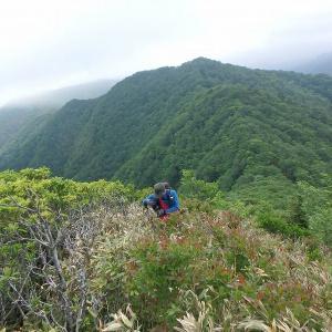裏那須藪開き完結編 栃木福島県境1389m地点・黒滝股山・1360m地点・上海岳、そして大川峠へ その1