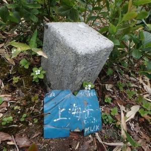 裏那須藪開き完結編 栃木福島県境1389m地点・黒滝股山・1360m地点・上海岳、そして大川峠へ その3