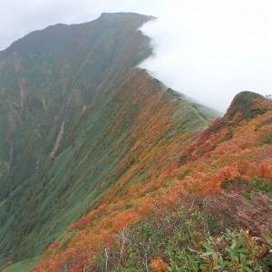 秋の谷川を行く 二日日 赤谷川本谷源流を詰めてオジカ沢の頭・谷川岳へ登り天神尾根・田尻尾根で下山 その1
