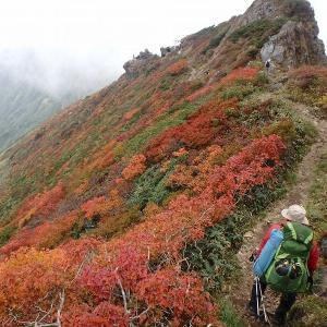 秋の谷川を行く 二日日 赤谷川本谷源流を詰めてオジカ沢の頭・谷川岳へ登り天神尾根・田尻尾根で下山 その2