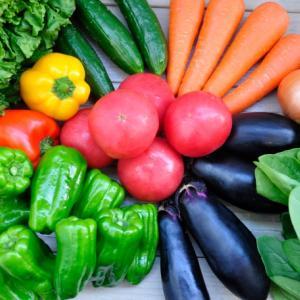 子どもの野菜嫌いに効果的!オーガニック野菜で野菜本来の味を教える!
