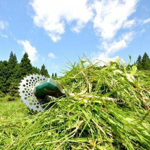 使って分かったメリット!マキタ充電式草刈機があなたの草刈を変える