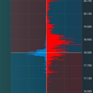 トルコリラ成長記録36 上昇の兆しが見えない 暴落を意識した積立