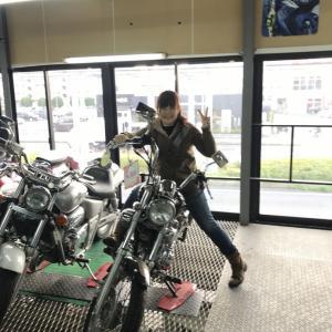 レンタルバイク(*´ω`*)