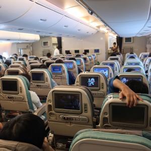 2019年クアラルンンプール旅行③成田~シンガポール機内食編