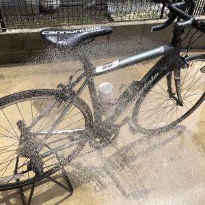 ロードバイクを洗い、美味しくなったスシロー
