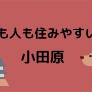犬も人も住みやすい街、それは小田原!その1