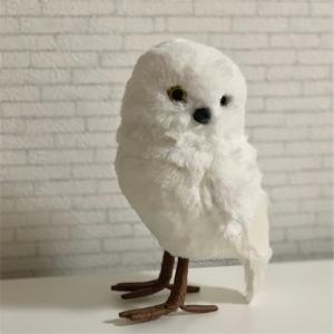 幸せの白いフクロウ。