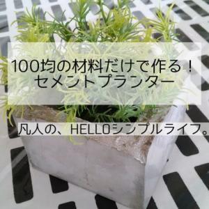【ハンドメイド】100均商品だけでセメント鉢を作ってみた。
