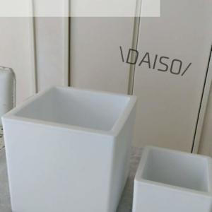 【ダイソー】真っ白・シンプル・軽い・安い…とにかく良いプランター!