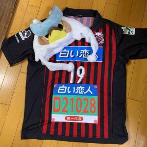 今年はヤバかった!北海道マラソン