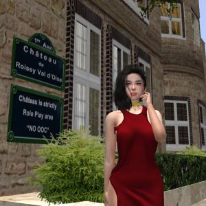 探検旅行-2 ロワッシイの城 / Roissy Val-d'Oise