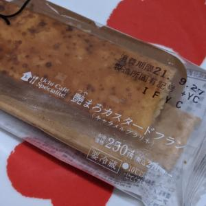 Uchi Café Spécialité 艶まろカスタードフラン(キャラメルプラリネ)