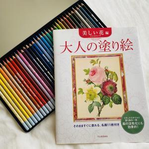 【大人女性におすすめ】家で一人で没頭できる趣味「大人の塗り絵」と色鉛筆をふるさと納税で頂きました!