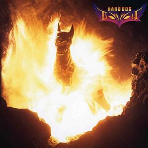 「Gonna Be Alright/地獄のハンマー」を弾く BOWWOW