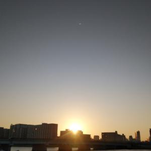 やすらぎガーデン2019 / 新潟市中央区