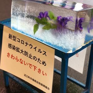 近江町市場の夏の風物詩「氷柱」/今年はちょっと違います。触れなくても、目で楽しめる!