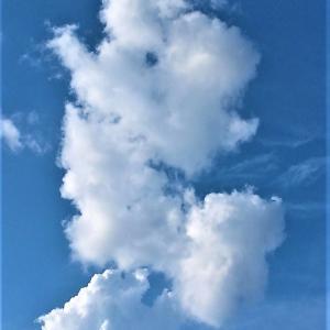 変わり雲の記録