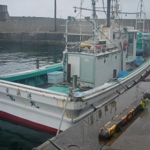 6月19(金) 島牧第二栄浜漁港よりヒラメ狙いで出船