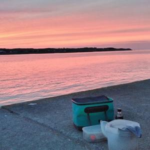 7月10日(金) 太平洋側の漁港で黒ソイ釣