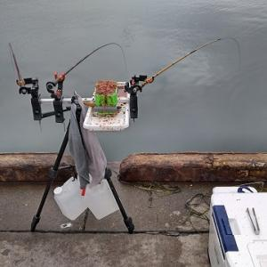 7月25日(土) 太平洋側の漁港にてチカ釣り