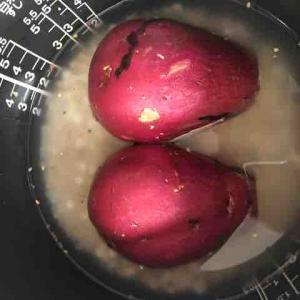 冷やしサツマイモの季節?