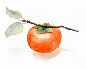 味覚の秋 原っぱの美味しそうな柿は渋柿だった