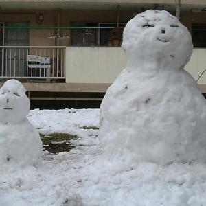 関東は大雪予報 ワクワク感がよみがえります