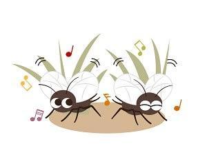 秋の虫たちの四重奏は心地よいです